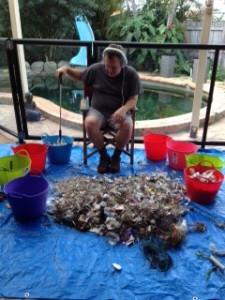 how we sort the rubbish