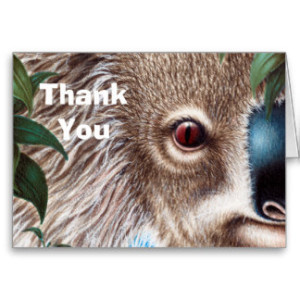 curios_koala_thank_you_note_card-r9e31cb75e6ac47b9a2bb5a143fb54bbc_xvua8_8byvr_324